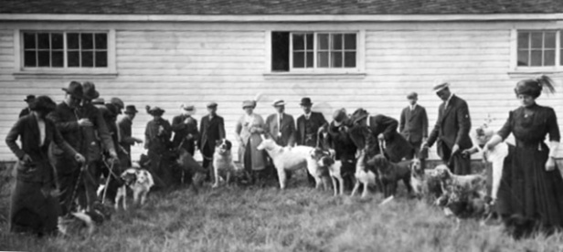 1911 EKC Dog Show at the Edmonton Exhibition Grounds.
